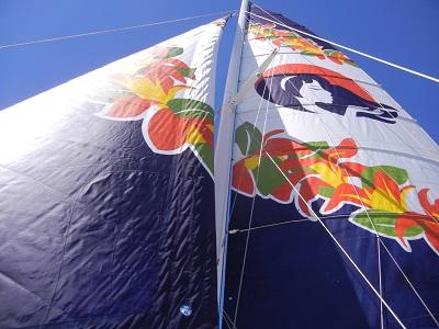 Catamaran wind power