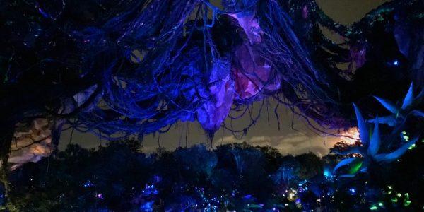 Walt Disney World Pandora World of Avatar Tips For Your Journey