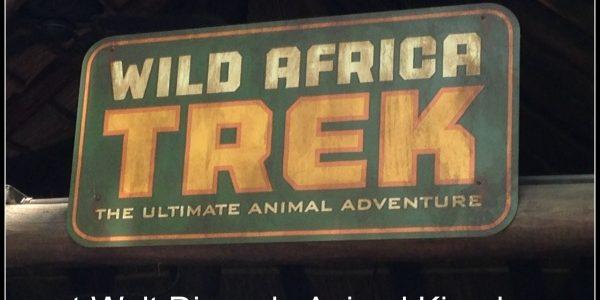Wild Africa Trek at Walt Disney's Animal Kingdom