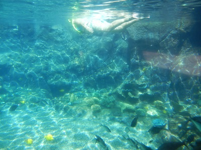 Rainbow Reef snorkeling