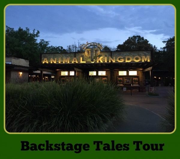 Backstage Tales Tour at Disney's Animal Kingdom