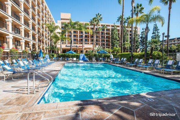 Tripadvisor Disneyland Good Neighbor Hotels