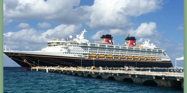Disney Cruise Line- It's for adults too!