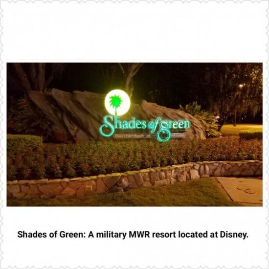 Shades of Green Pin