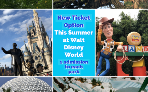 New Summer One World Ticket for Coming June 4