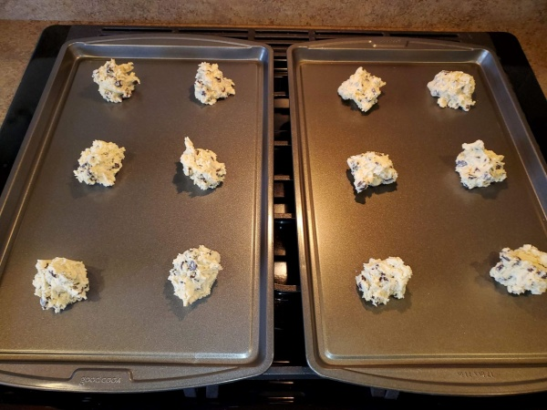First Batch of cookies prior to baking