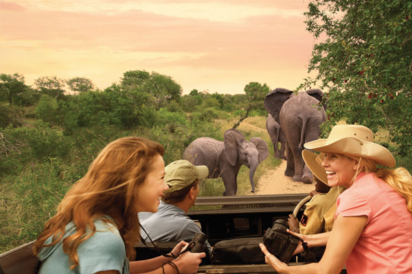 Safari to South Africa Itinerary - Adventures by Disney Vacation