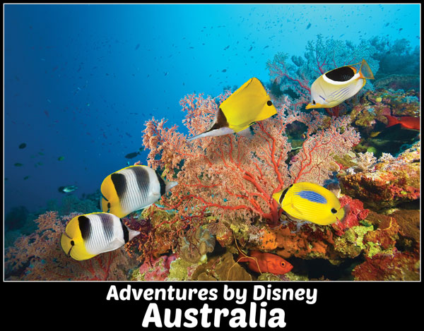 Adventures by Disney Australia Family Vacation
