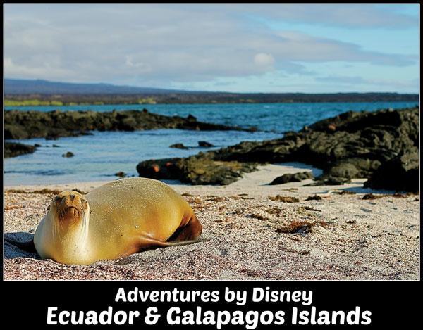 Adventures by Disney - Galapagos Islands