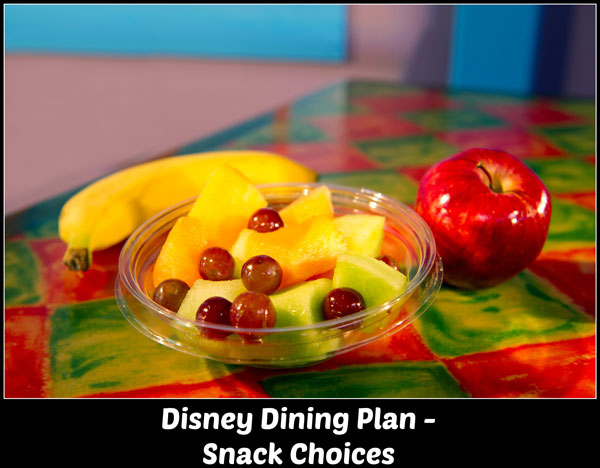 Disney Dining Plan - Snack Choices