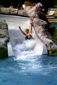 Pool Slide at Disney's Wilderness Lodge